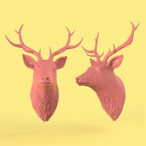 Deer_01
