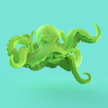 Octopus_01